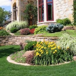 Поддержание плодородия почвы и посадка растений